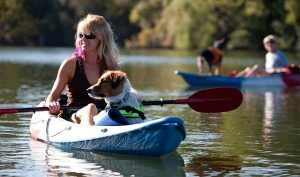 Durability of Kayak with Dog Seat