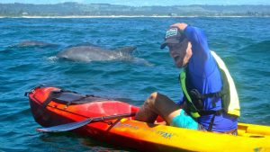 How is an ocean kayak safer